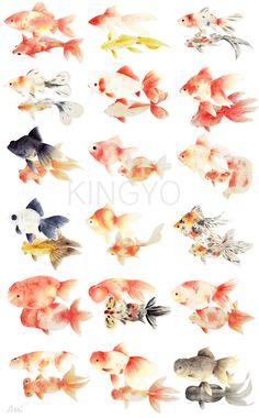 Watercolor Fish, Watercolor Paintings, Goldfish Tattoo, Goldfish Pond, Golden Fish, Cool Fish, Fish Drawings, Fish Sculpture, Beautiful Fish