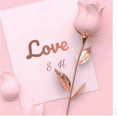Saleem hafsa S Love Images, Beautiful Love Pictures, Alphabet Style, Alphabet Design, Cute Relationship Quotes, Cute Relationships, Picture Letters, Love Letters, Cherry Blossom Bedroom