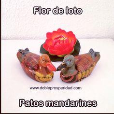Dentro de la simbología del Feng Shui, se encuentran como activadores del amor y las relaciones de pareja la flor de loto y los patos mandarines, que usados correctamente atraerán grandes beneficios en este aspecto.