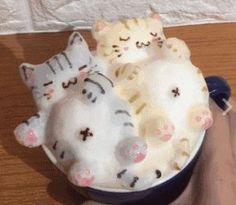 Latte Art Cat - Wilson is Home Dessert Drinks, Yummy Drinks, Coffee Gallery, Coffee Latte Art, Kawaii Dessert, Bento Recipes, Cafe Art, Japanese Sweets, Cafe Food