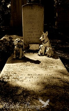 Bonaventure Cemetery, Savannah Georgia