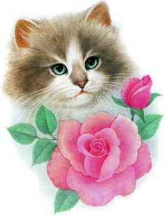 Kittens Cutest, Cats And Kittens, Cute Cats, Cat Traps, Kitten Cartoon, Kitten Images, Bling Wallpaper, Colouring Pics, Animation