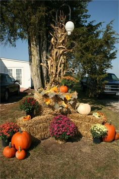 32 Amazing Outdoor Fall Decoration Ideas You Should Try Now - Halloween yard decorations are really appealing and exciting for people of all ages. It does not matter whether you have a small yard or a very large . Outside Fall Decorations, Fall Yard Decor, Fall Wagon Decor, Yard Decorations, All You Need Is, Autumn Display, Fall Displays, Autumn Garden, Looks Cool
