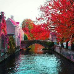 bruges belgium is a beautiful medieval city that is sometimes called the venice of the north below is the pictorial tour of bruges shows the tourist