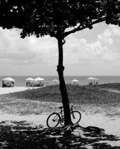 """Terceira arte mais vendida do mês, até o momento. Compre pelo site!!! """"SOMBRA E BIKE"""", de Martiniano Ferraz. À venda em www.UrbanArts.com.br  #decor #canvas #telas #quadros #urbanarts #martinianoferraz #arquitetura #decoracao #arte #casa #interiores #sombra #bike #bicicleta #arquiteto #arvore #praia #natureza #maisvendidos #maisvendido"""