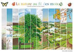 La nature au fil des mois : Mettler, René