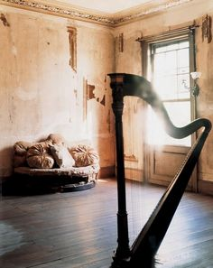 tobias harvey // a harp in the sitting room