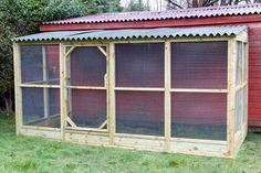 Large Chicken Run 3 sided 6x9' basic size