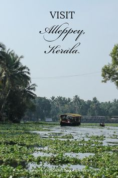 Kerala Backwaters of Alleppey: How I stole a day amidst my work trip to visit - Explore with Ecokats Kerala Travel, India Travel Guide, World Travel Guide, Best Travel Guides, Bali Travel, Work Travel, Munnar, Kochi, Kerala Backwaters