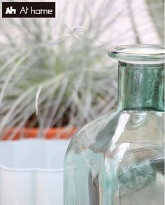 Get a summer feeling in your home! Summer Feeling, Glass Vase, Home Decor, Decoration Home, Room Decor, Home Interior Design, Home Decoration, Interior Design