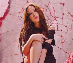 Love U So Much, Like You, Blackpink Lisa, Happy Birthday Me, Seokjin, Kpop, Concert, Aesthetic Dark, Shrimp
