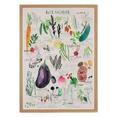 Ein neues Poster der Berliner Illustratorin Rinah Lang. Nach dem Saisonkalender für Gemüse und Obst, einem unserer beliebtesten Prints, hier nun das neue Motiv