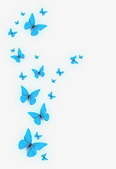 Glowing blue butterfly, Radiance, Blue, Butterfly PNG Image and Clipart Butterfly Clip Art, Butterfly Images, Butterfly Drawing, Unicornios Wallpaper, Iphone Background Wallpaper, Aesthetic Iphone Wallpaper, Butterfly Wallpaper Iphone, Disney Phone Wallpaper, Butterfly Background
