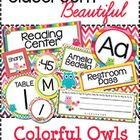 Make your classroom beautiful and organized with this set of labels. Bright colors and darling owls with paisley accents. Print the ready made labe...