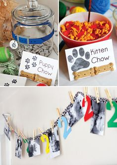 Playful Puppy and Kitten 2nd Birthday Party