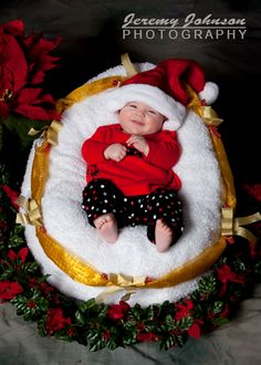 Maggie in her Christmas outfit. Jeremy Johnson Photography.