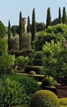 Advice on everything gardening Boxwood Landscaping, Outdoor Landscaping, European Garden, Italian Garden, Formal Gardens, Outdoor Gardens, Beautiful Landscapes, Beautiful Gardens, Gardens Of The World
