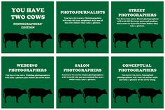 You Have Two Cows: Photographers' Edition