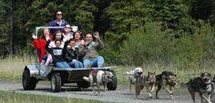 SKAGWAY:  Yukon Discovery & Sled Dog + new territory in Canada =)