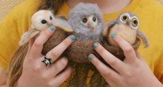 Needle Felted Hooty Owls