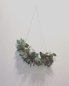 Moderni Eucalyptus kranssi Modern eucalyptus wreath