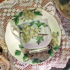 Vintage Royal Albert Tea Cup & Saucer -Flower of the Month Hawthorne No 5
