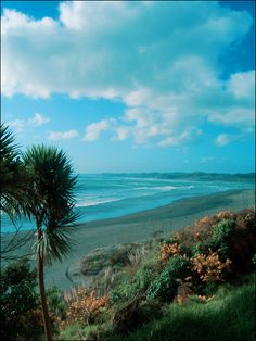 Raglan Beach- New Zealand - one place I lived in the North Island and absolutely loved for its lifestyle and people