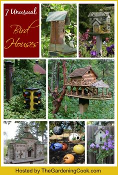 7 Unusual Bird Houses for our fine feathered friends.