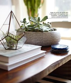 coffee table styling -- love the idea of a small terrarium for on the coffee table