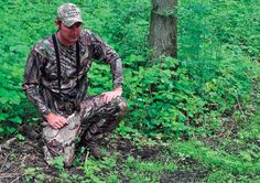 Food Plots For The Working Man