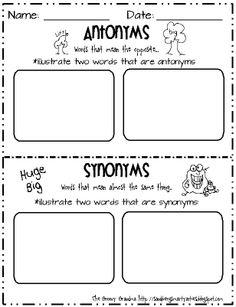 Antonyms/Synonyms