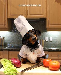 Chef Oakley
