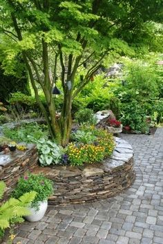 Stone, raised bed.... nice way to accent a tree.