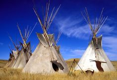 Tepees.. in South Dakota which is home to nine different Native American tribes, including Lakota, Dakota, and Nakota people.  Spread throughout the state, the nine tribes include the Cheyenne River Sioux, Crow Creek Sioux, Flandreau-Santee Sioux, Lower Brule Sioux, Oglala Sioux, Rosebud Sioux, Sisseton-Wahpeton Oyate, Standing Rock Sioux, and the Yankton Sioux Tribe