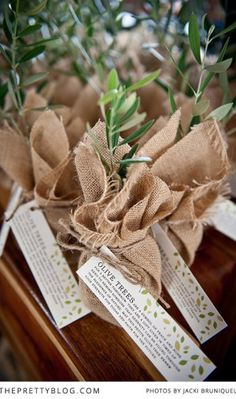 Olive Tree  favors - cute idea for dinner party place setting