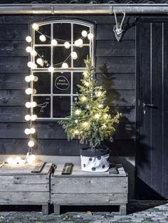 Cotton ball garland/light idea. Absolutely charming rustic Christmas decor!
