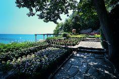 gradina labirint (nivelul 2), maze garden (level2), Labyrinth garten (stufe 2), le jardin labyrinthe (niveau 2) Maze, Vineyard, Outdoor, Fotografia, Labyrinth Garden, Lawn And Garden, Outdoors, Vine Yard, Labyrinths