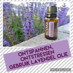 Meer informatie ontvangen over gebruik van etherische oliën ? Mail mij info@mikor-oil.nl of bezoek eens mijn website Www.mikor-oil.nl Doterra, Soap, Personal Care, Website, Bottle, Beauty, Lavender, Self Care, Personal Hygiene