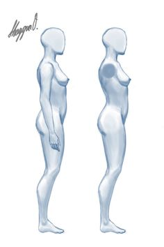 Female Anatomy Template: Side by Shintenzu on deviantART