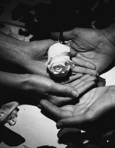 Fira de la rosa de Roses. by Vanessa  Arellano on 500px