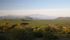 Samburu Reseve, Kenya