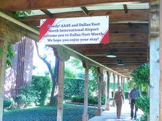 AAAE Dallas- Dallas Hilton Anatole Hotel