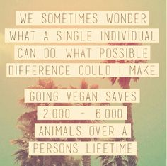 Food for thought?  #veganism