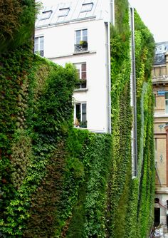 Rue d'Alsace, Paris - France