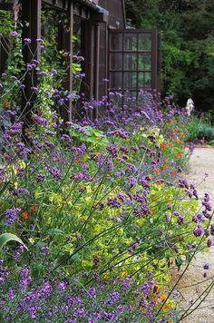 Beautiful perennial garden. - Dreaming Gardens