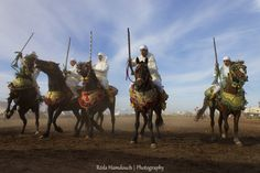 "Fantasia by Réda Hamdouch on 500px. Fantasia is a traditional equestrian performance practiced during cultural festivals in Morocco, and occurs traditionally to close Berber wedding celebrations in Maghreb. Fantasia is an imported name, the actual traditional term used is ""Game of gunpowder"". It consists of a group of horse riders, wearing traditional clothes and charging along a straight path at the same speed so as to form a line"