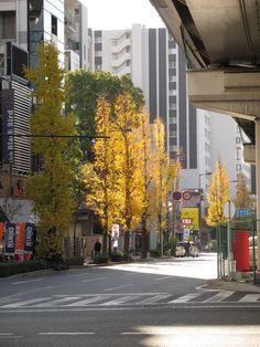 Shin-midosuji, Osaka