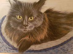 Coloured Pencils, Owl, Birds, Landscape, Portrait, Cats, Artwork, Animals, Color