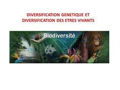 DIVERSIFICATION GENETIQUE ET DIVERSIFICATION DES ETRES VIVANTS.