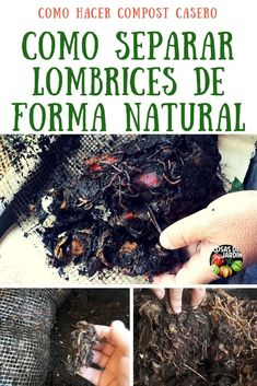 Ethereal Helping Nature by Composting Ideas. Admirable Helping Nature by Composting Ideas. Garden Compost, Gardening, Hydroponics, Garden Plants, Nature, Garden Tips, Ideas Para, House, Compost